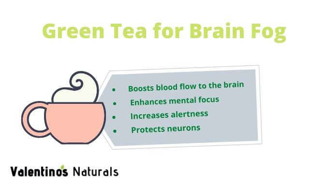 best tea for brain fog - green tea infographic