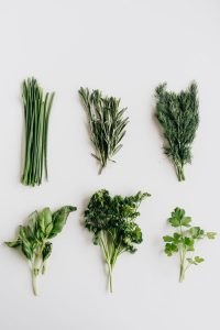 Nootropics: 5 Brain Boosting Herbs to Support Cognitive Health